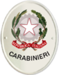 Il enseigne institutionnel Carabiniers (Graphics) .png