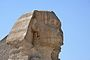 Grand Sphinx de Gizeh (1) .jpg