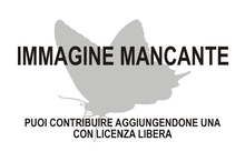 Photo andesiana manquant