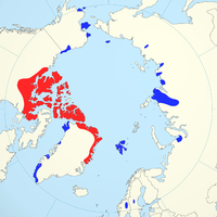 combined.png de distribution Muskox