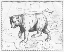 Constellation de la Grande Ourse Hevelius.jpg